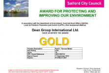 gold award DG